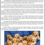 Informativo CCZ